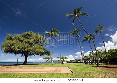 View of Lahaina harbor park, Maui, Hawaii