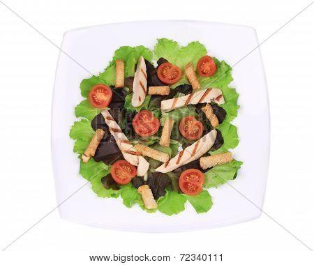 Tasty caesar salad.