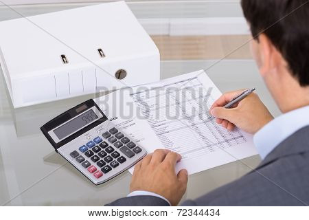 Accountant Calculating Finances