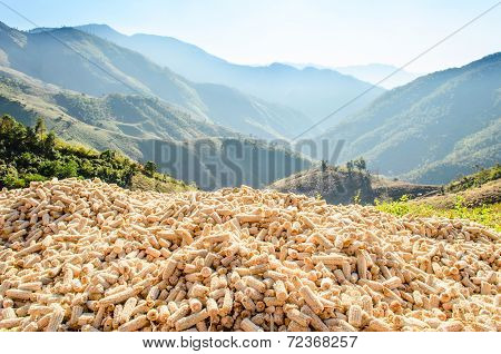 Mountain View Landscape And Corncob Pile