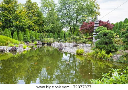 Green Pond In Japanese Garden In Bonn