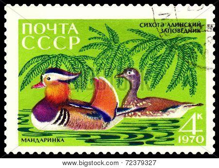 Vintage  Postage Stamp. Mandarin Ducks.