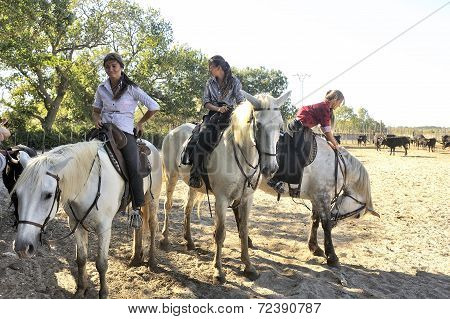 Girls Herdsmen In The French Camargue Region