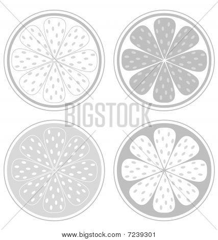 Citrus fruit slices isolated on white background