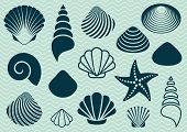stock photo of aquatic animal  - Set of various sea shells and starfish silhouettes - JPG