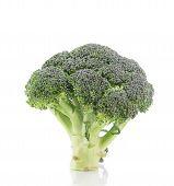 foto of cruciferous  - Beautiful ripe broccoli - JPG