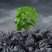 foto of waste management  - Rehabilitation concept and rehabilitate a suffering patient medical and mental health symbol going through rehab for drug abuse or emotional damage as a sapling tree with green leaves shaped as a human head growing out of a heap of garbage bags - JPG