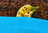 pic of ejaculation  - Bananas hugging each in bed - JPG