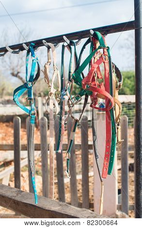 Horse Bridles And Other Equipment In The Stable.