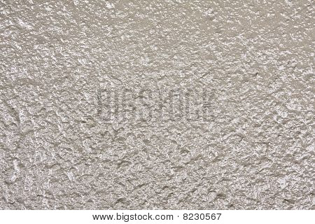 Fresh Concrete Texture