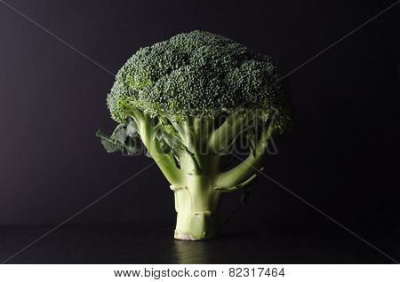 Broccoli Tree Shape On Black