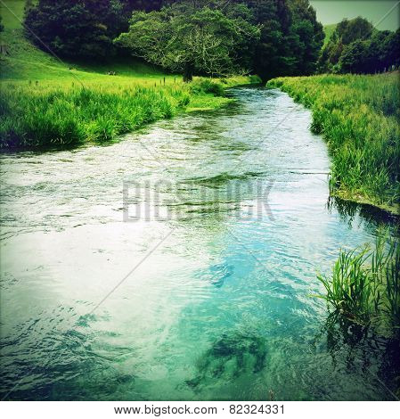 Pure clean spring water stream