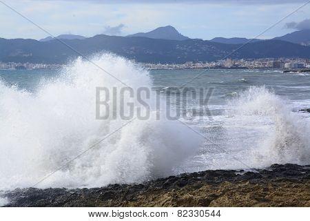Large Wave Palma Bay.