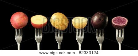 Three kind of potato on a fork on a black background