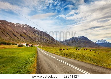 Mountains and the town of Holar in Iceland