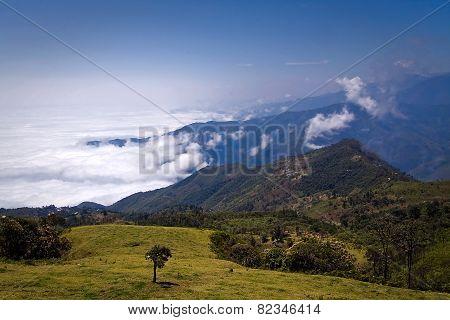 Molleturo landmark in Azuay Cuenca Ecuador