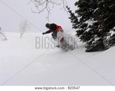Snowboard Hollie