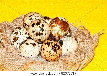 quail eggs