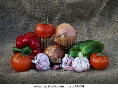 Spain vegetables