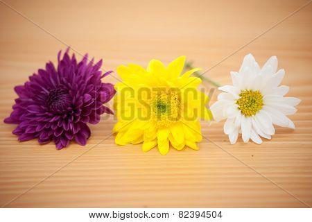 Arrangement Flower On Wooden Background