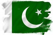pic of pakistani flag  - Pakistan flag backdrop background texture isolated on white - JPG