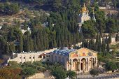 picture of church mary magdalene  - Church of All Nations and the golden domes of the Church of Mary Magdalene - JPG