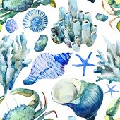 image of beach shell art  - Beautiful watercolor vector pattern with corals shells and crabs - JPG