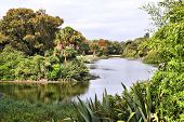 picture of royal botanic gardens  - Melbourne in Victoria state Australia - JPG
