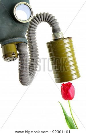 Breathing Gas Mask Oxygen Smelling Flower