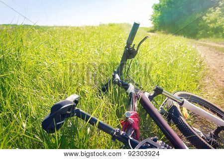 Tired Bicycle Lying In The Grass