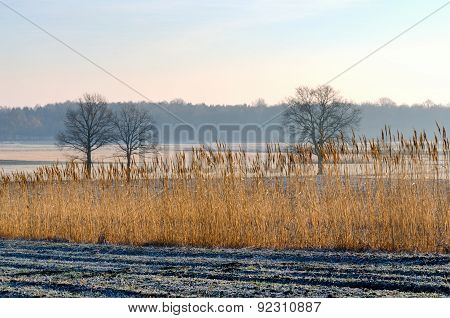 Countryside landscape in early morning.