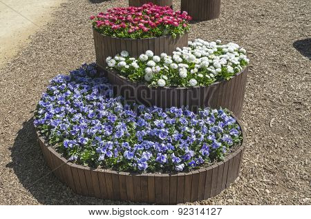 Three-level Flower Beds In The Form Of Wooden Barrels
