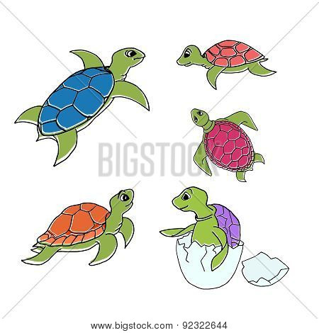 set of turtles in cartoon style