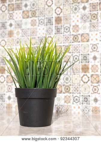 Artifical Grass And Ceramic Tiles