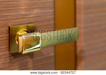 Closeup Of Brass Door Handle