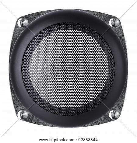 Mesh Of The Speaker On A White Background