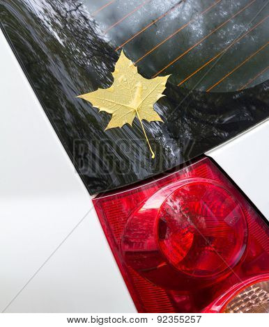 Autumn Maple Leaf As A Label Stuck To The Car