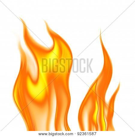 Flames On A White Background