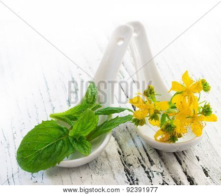 Mint and St John's wort