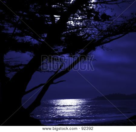 Moonrise Over Carmel