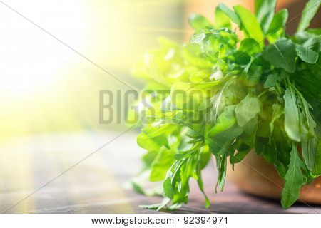 Fresh organic rucola leaves on a wooden table