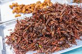 foto of locust  - Fired locusts and worms on local food market - JPG