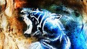 stock photo of white tiger cub  - painting abstract tiger collage on color space background wildlife animals - JPG