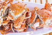 picture of crab  - crab seafood in thailand and bamboo table background - JPG