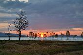 stock photo of fantastic  - Fantastic silhouette tree in sun rise Thailand  - JPG