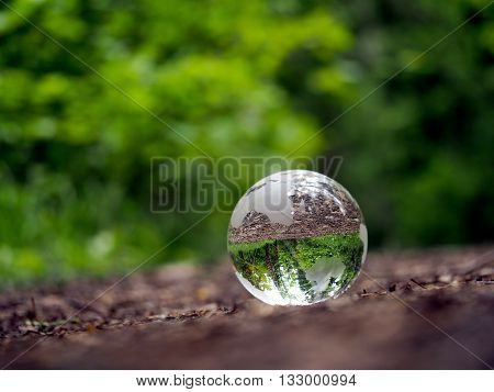Globe in the forest Glass - a material, concepts and themes, concepts, environment, nature, ecology