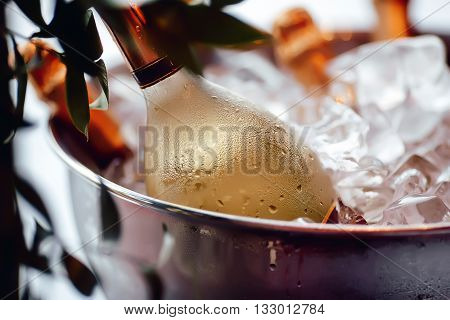 Bottle of white wine sparkling in a bucket of ice, leaves, close-up, iny, droplets, condensation, bokeh, blurred background