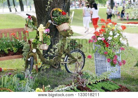 Flower Installation With Bicycle