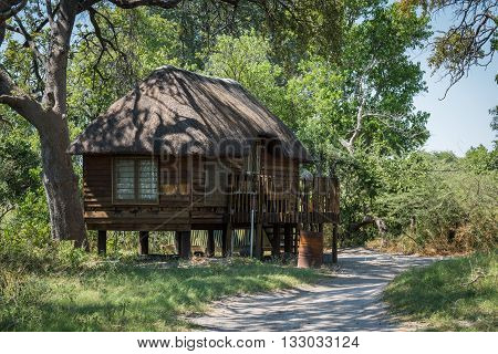 Wooden cottage on stilts with thatched roof