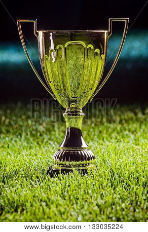 Shiny metal cup - first prize for champion